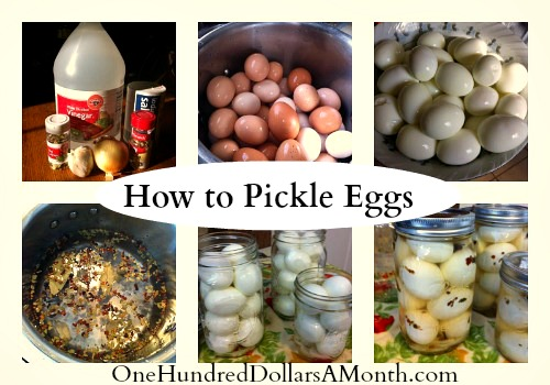 Recipe – How to Make Pickled Eggs