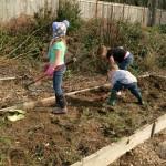 kids working in a garden