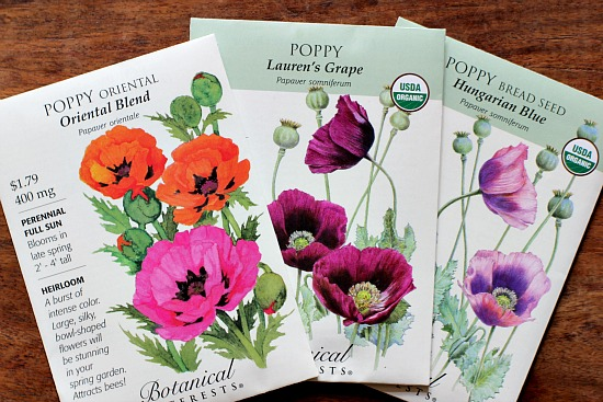 poppy seed packets
