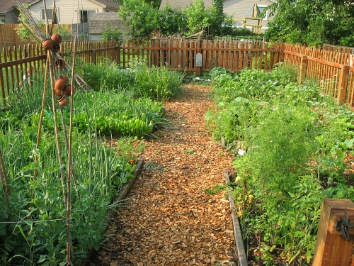 raised-garden-beds-1