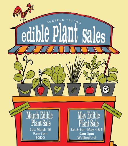 Seattle Tilth March Edible Plant Sale March 16th, 2013