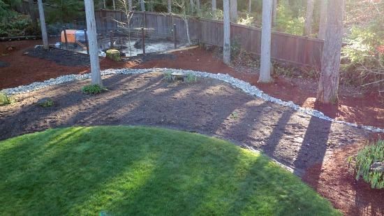 suburban backyard garden