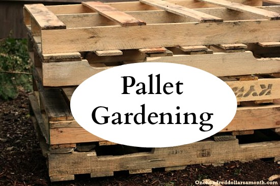 Pallet Gardening 101: Creating a Pallet Garden | One Hundred ...
