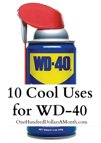 40 Cool Teen Fashion Ideas For Girls: 10 Cool Uses For WD-40