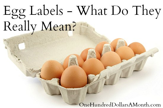 Egg Labels and What They Really Mean