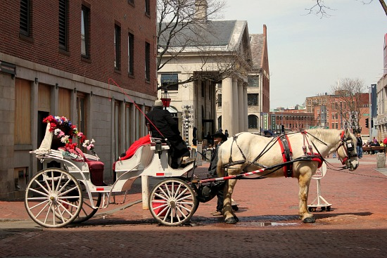 Faneuil Hall horse drawn carriage