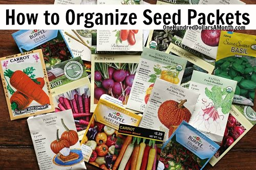 Gardening Tips – How to Organize Seed Packets