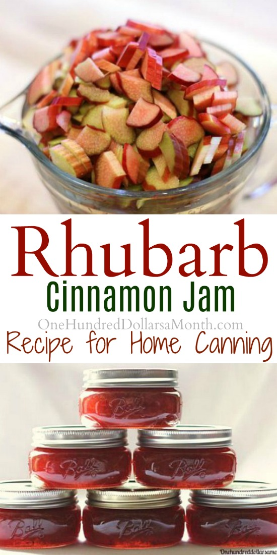 Canning 101 – Rhubarb Cinnamon Jam Recipe