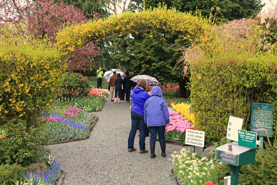 Skagit Valley Tulip Festival - Roozengaarde