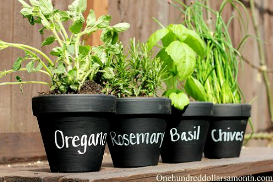 Teacher Appreciation week Gift Idea Chalkboard Painted Herb Pots