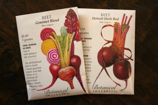 How to Grow Beets {Start to Finish}
