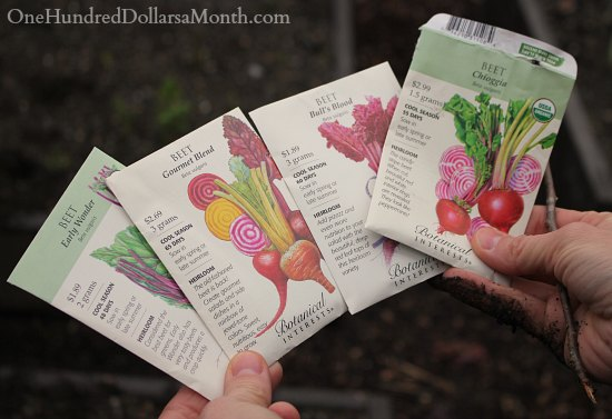 botanical interests seed packets beets