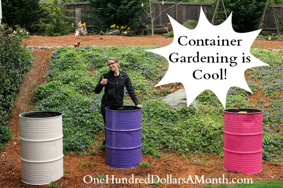 Container Gardening Cool Garden Containers You Wont See in Your