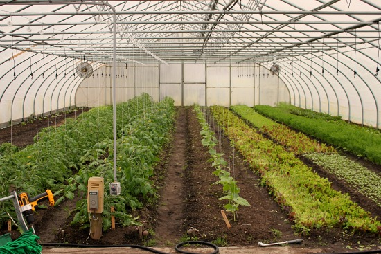 eliot coleman four season farm greenhouse