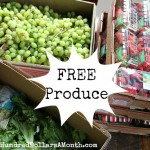 feed-your-family-for-free
