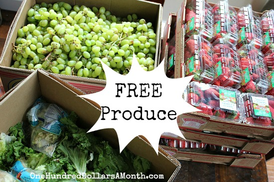 Reclaimed Food Show and Tell – Free Strawberries and Grapes