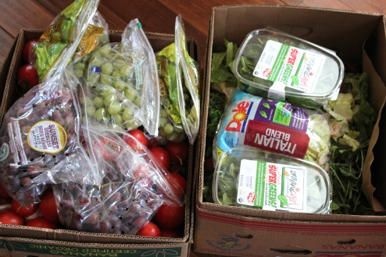 Food Waste In America – Reclaimed Food Show and Tell