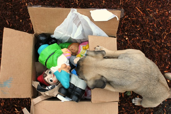 Mavis Asks Readers to Send in Gnomes – Awesome Update!