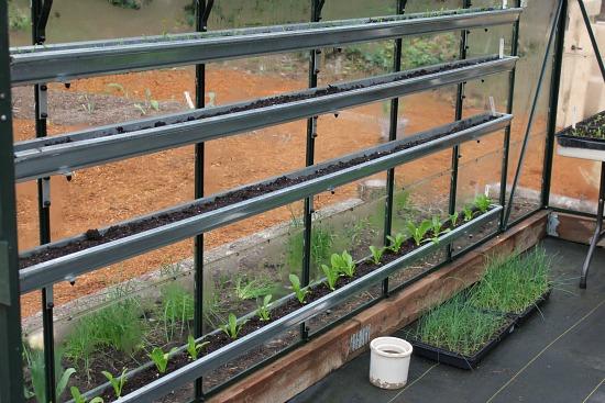 grow food in gutters