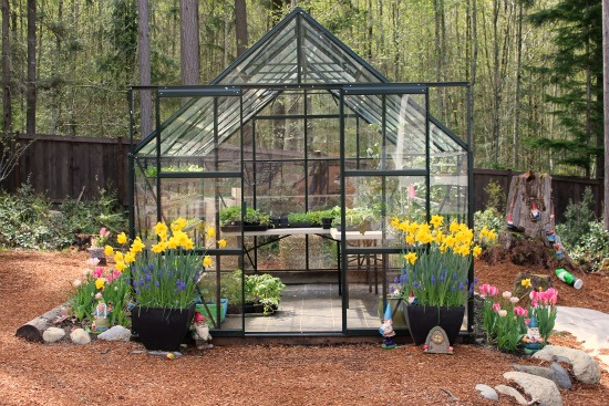 magnum glass greenhouse gardening