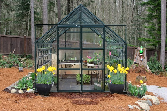 Growing Vegetables in a Greenhouse – Early April Pictures