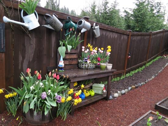 Mavis Butterfield   Backyard Garden Plot Pictures – Week 15 of 52