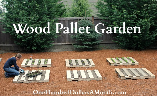 recycled-wood-pallet-garden