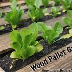 DIY Recycled Wood Pallet Garden