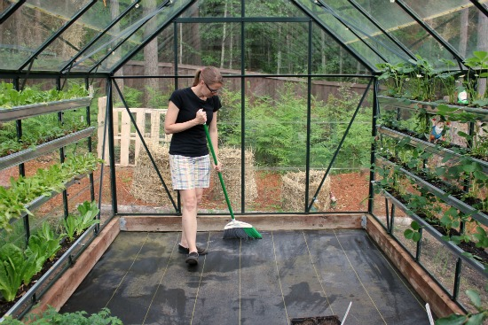 Greenhouse Gardening For Beginners How To Grow