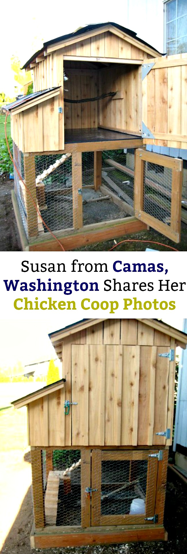 Susan from Camas, Washington Shares Her Chicken Coop Photos