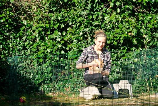 gardening in the netherlands