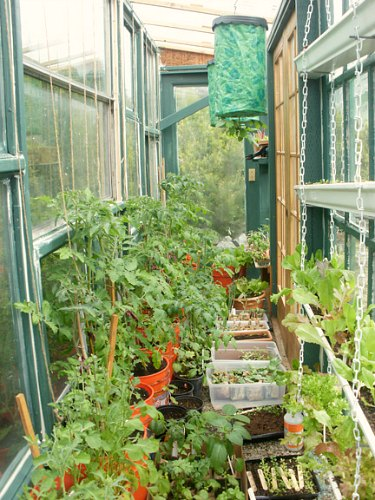 greenhouse garden photos