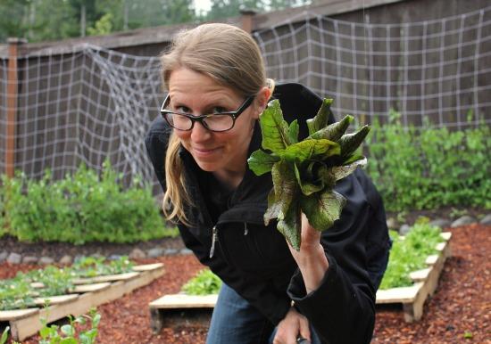 Wood Pallet Gardening – The Big Harvest