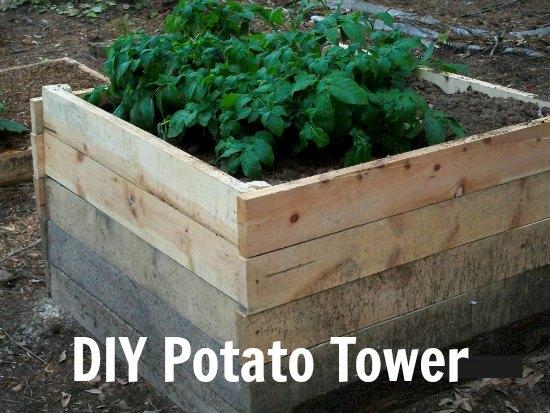 potato-tower-made-of-scrap-wood1