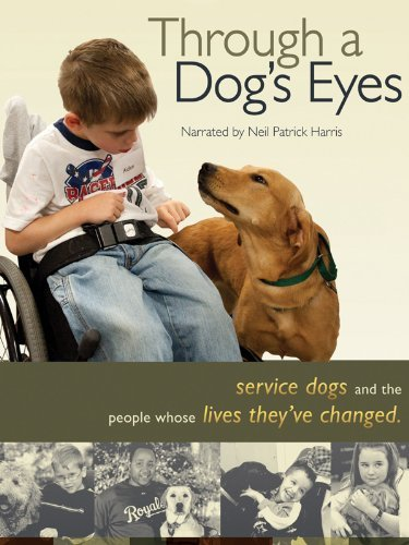 Friday Night at the Movies – Through a Dog's Eyes