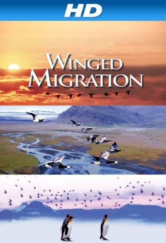 Friday Night at the Movies – Winged Migration