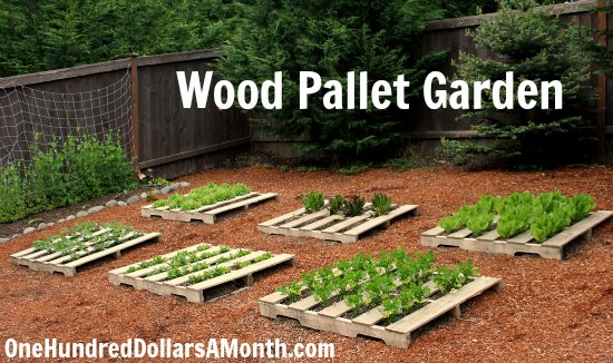 Image Result For Vegetable Garden Using Pallets