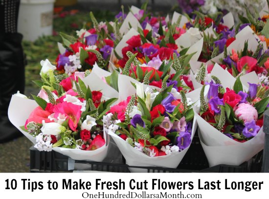 10 Tips To Make Fresh Cut Flowers Last Longer One