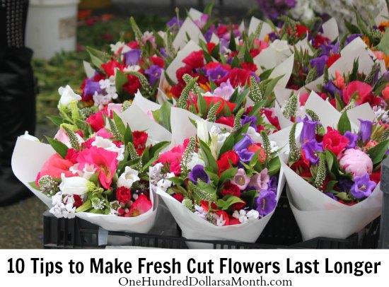 10 Tips To Make Fresh Cut Flowers Last Longer