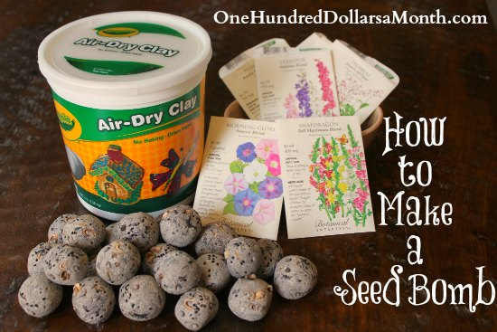 How to Make a Seed Bomb