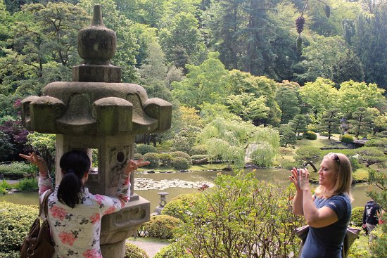Japanese Tea Garden - Seattle pictures
