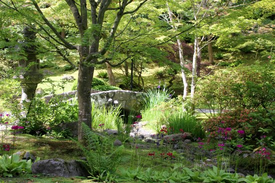 Japanese Tea Garden – Seattle
