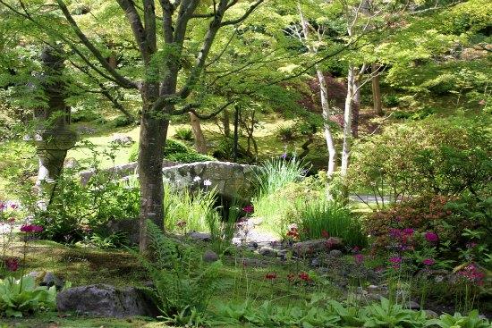 Japanese Tea Garden – Seattle