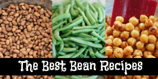 bean collage