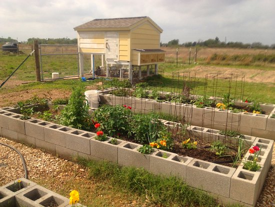 cinder block garden cute chicken coop design