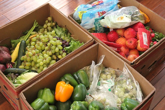 Food Waste in America Round Up
