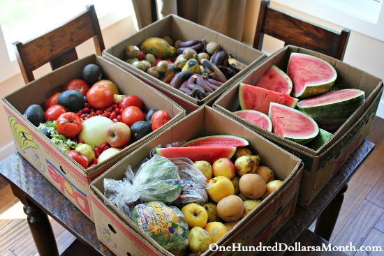 Food Waste In America – What Should I Do with Kiwis and Red Bananas?