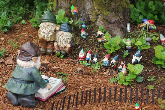 Gnome In Garden: Mary From St. Jude Checks In On The Gnomes {And Takes A
