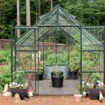 glass greenhouse