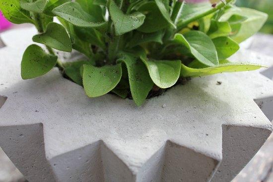how to make a star shaped concrete planter